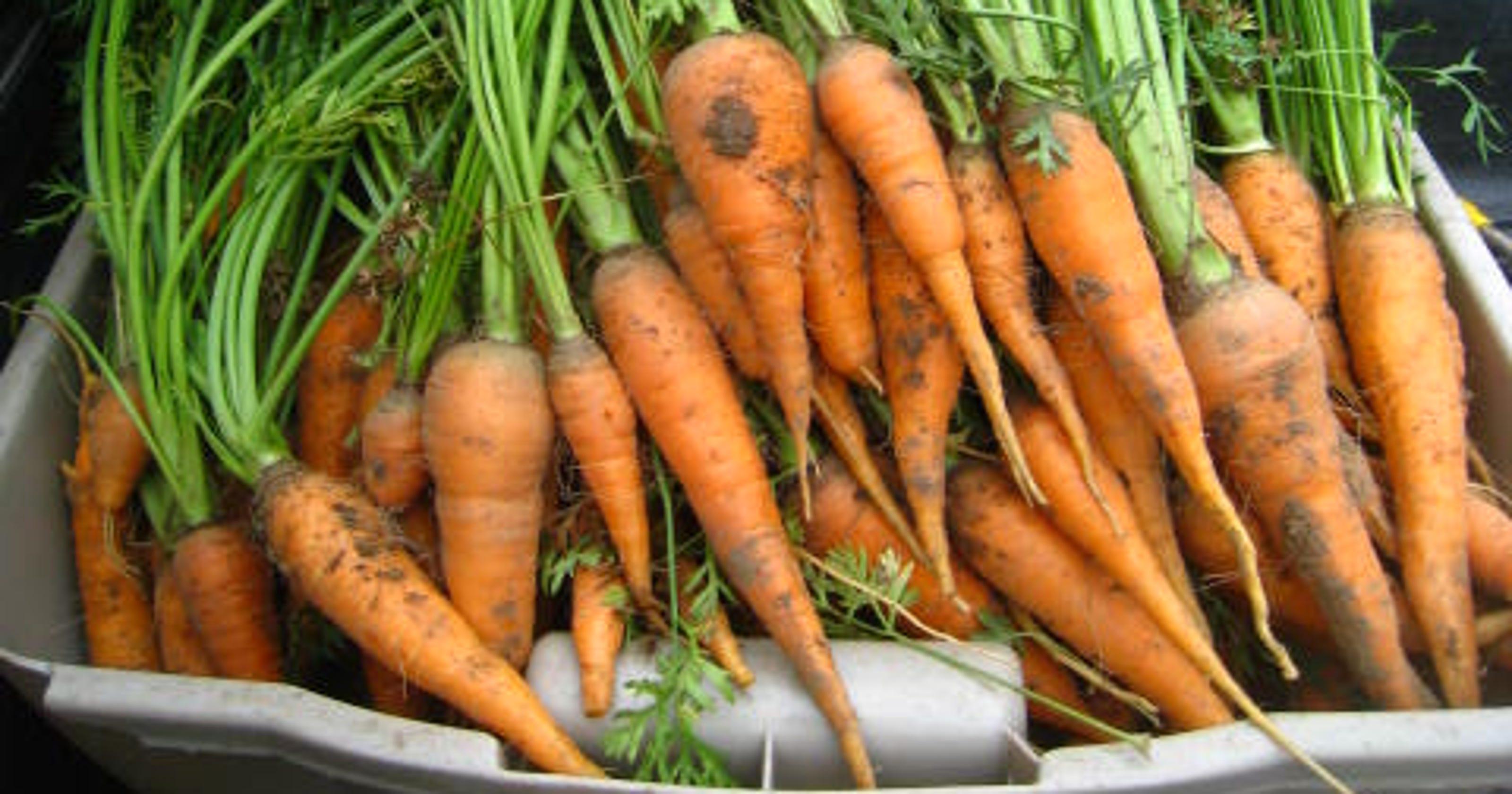 Food Pantries Fresh Produce