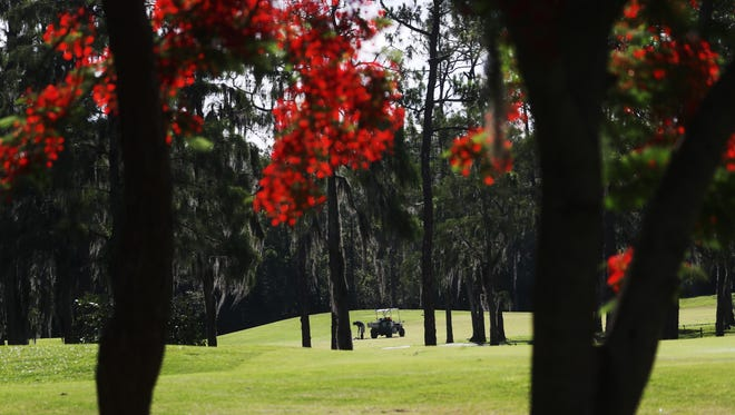 A member of the ground crew performs maintenance at the Eastwood Golf Course on Wednesday 6/6/2018. It could be looking at a $3 million renovation on the back nine of the golf course in April 2019.