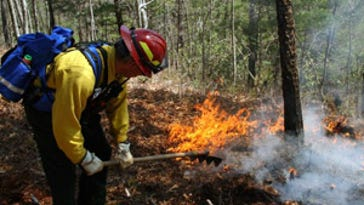 A firefighter works to contain fire in the Smokies.