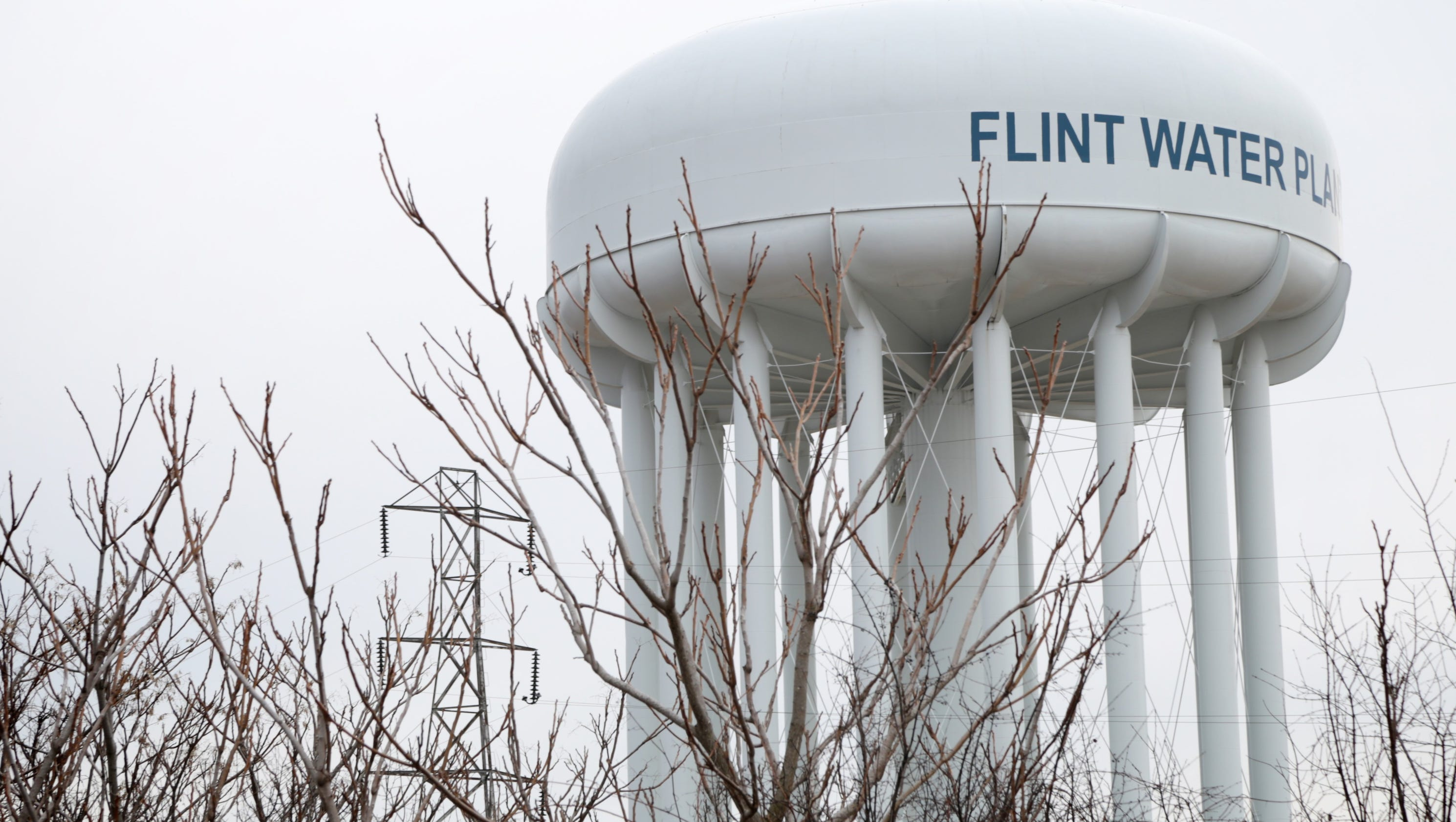 Who Buy Cars In Flint