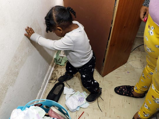 In this Feb. 20, 2019 photo, Destiny Johnson's son, Hayden Howard, 2, steps on roaches in his mother's apartment in Cedarhurst Homes, a federally subsidized, low-income apartment complex in Natchez, Miss.