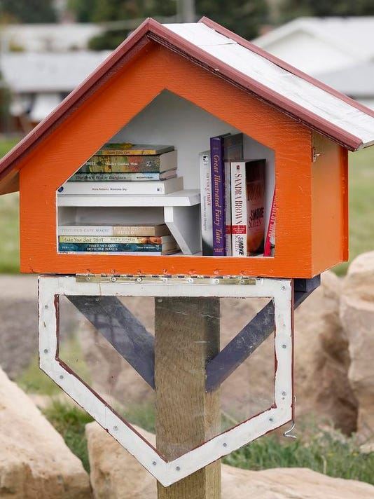 2 little free library