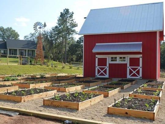Farm Tour  Tallahassee