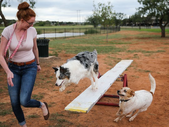 A dog owner plays with her dog on a obstacle during the grand opening of the dog park Saturday, Oct. 21, 2017, along the Red Arroyo Trail.