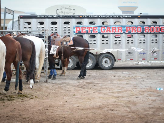Pete Carr Pro Rodeo unloads stock for the 86th annual