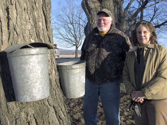 Maple syrup maker Fred Hopkins, left, and his wife Maureen Lake stand next to sap-collecting buckets in St. Albans, Vt., lent to him after 140 of his buckets were stolen off trees.