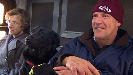 This image provided by KOMO-TV shows Eclipse, a black Labrador, riding between two other passengers on her way to the dog park. In owner Jeff Young's words, 'She's a bus-riding, sidewalk-walking dog.' Young says his dog sometimes gets on the bus without him, and he catches up with her at the dog park three or four stops away. Bus riders report she hops onto seats next to strangers, and watches out the window for her stop. Says commuter Tiona Rainwater, 'All the bus drivers know her ... she makes everybody happy.' A Metro Transit spokesman says the agency loves that a dog appreciates public transit.