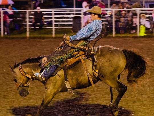 A bucking bronc at the 2016 Pink for Peitz Rodeo.