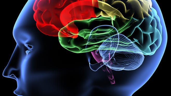 A grant will allow URMC to work with other institutions on research into Parkinson's disease.