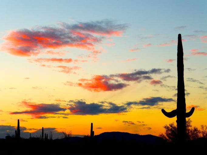 The sun sets over the desert outside of Ajo.