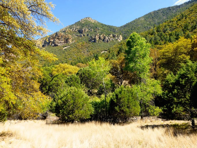 Ramsey Canyon is renowned for its scenic beauty and