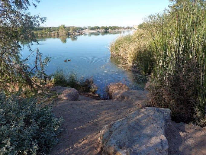 adult activities arizona east valley