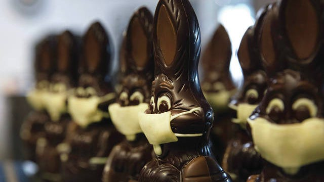 In this photo taken on Wednesday, April 8, chocolate rabbits with face masks are lined up at the Cocoatree chocolate shop in Lonzee, Belgium. As all non-essential shops in Belgium have been closed due to the outbreak of COVID-19, many chocolatiers have had to resort to online sales, home delivery or pick up on site. The new coronavirus causes mild or moderate symptoms for most people, but for some, especially older adults and people with existing health problems, it can cause more severe illness or death.