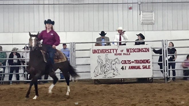 The University of Wisconsin-River Falls hosted the 41st Annual Colts in Training Sale,  May 6, 2017. This sale is unique to UWRF, drawing in hundreds of buyers from across the nation and even from abroad.