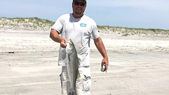 Steve L. with a small bass he caught in the Brigantine surf.