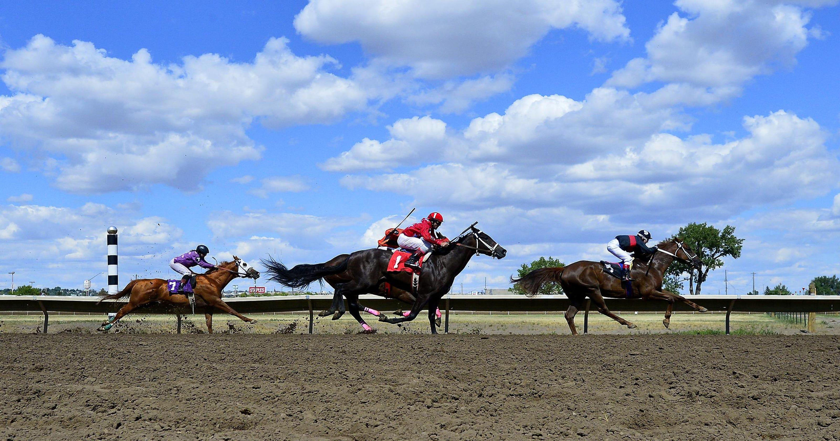 Scoreboard: Horse racing overnights, rodeo, baseball