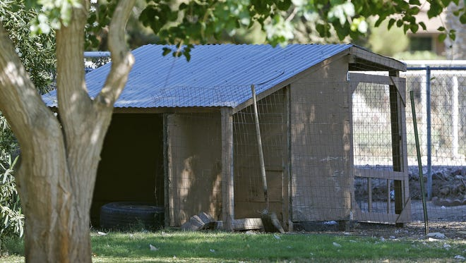 A shed at Green Acre Dog Boarding, as seen in June 2014 in the Gilbert area.