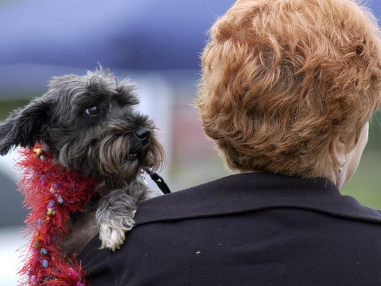 Cathy Cravens of Florence and her dog Mitzi make there way around a previous Pooch Festival.