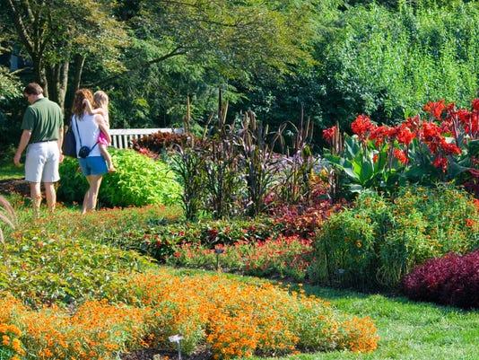 idea garden summer.jpg