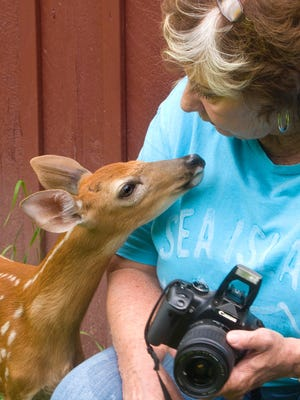Diane Solecki rescued and rehabilitated many injured or orphaned deer fawns. She passed away Oct. 25.