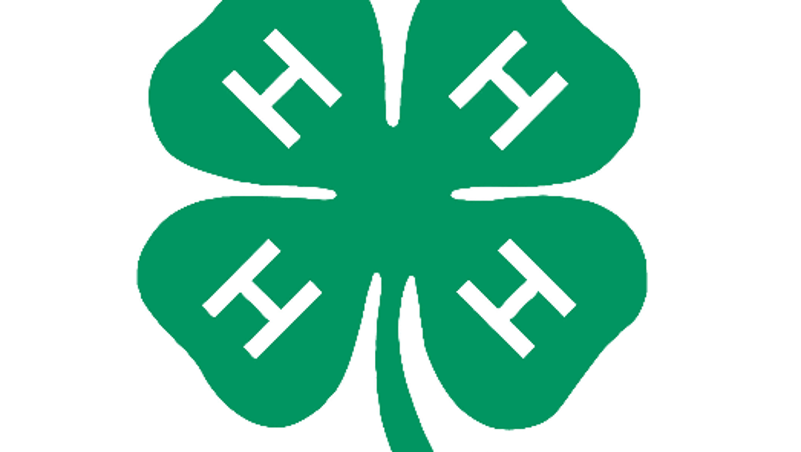 my 4h story A portfolio is an organized collection of a person's progress, achievements, contributions, and efforts that demonstrate accomplishments, size and growth over time 4-h portfolios contain important records that can be utilized in applying for scholarships and future employment.