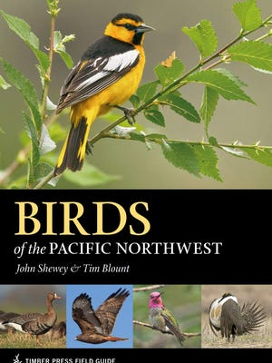 """A new book, """"Birds of the Pacific Northwest."""""""