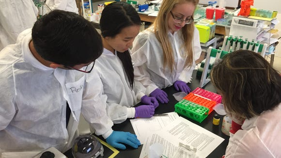 Students do an electrophoresis experiment in an advanced biotechnology class at Silva Health Magnet High School on Oct. 30.
