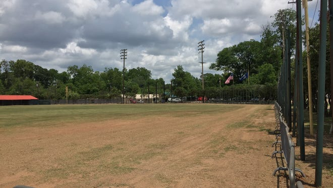 Bringhurst Field is being opened back up to the public as a green space.