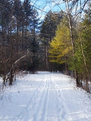 While the Scuppernong Trails in the Kettle Moraine State Forest-Southern Unit are no longer groomed for cross-country skiing, some skiers still take to the trails and make their own tracks.