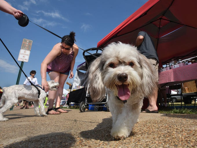 The Bossier City Farmers Market celebrates our canine