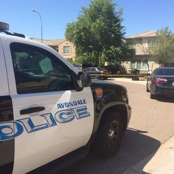 Police in Avondale, Ariz., investigating the drowning deaths of twin boys on Sunday