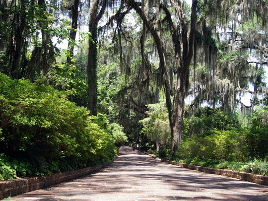 Tallahassee's Maclay Gardens State Park is a collection of floral gardens that include brick walkways, walled gardens, fountains, ponds, pine needle pathways and peaceful sitting areas.