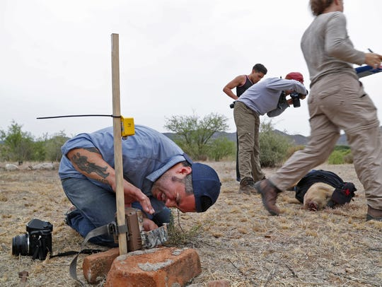 Jason De Leon adjusts a field camera June 15, 2018, as his team as other researchers take photos and observations on one of four pigs they posed in the desert near Arivaca, Arizona, to help determine what happens to migrants when they die in the desert.