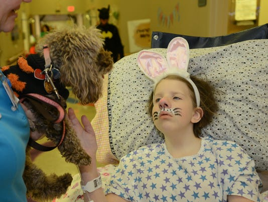 635502834965830008-TherapyDogs-06