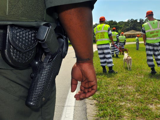 In a 2014 photo, Brevard County jail inmates do chain gang work at the North Animal Care Center in Titusville.