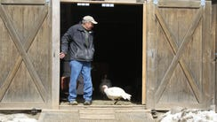 Crain and his wife, Ellen, operate Safe Haven Farm