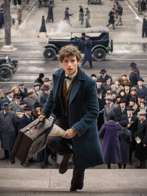 "Eddie Redmayne as Newt Scamander in a scene from the movie ""Fantastic Beasts and Where to Find Them."" The movie opens Thursday at Regal West Manchester Stadium 13, Frank Theatres Queensgate Stadium 13 and R/C Hanover Movies."