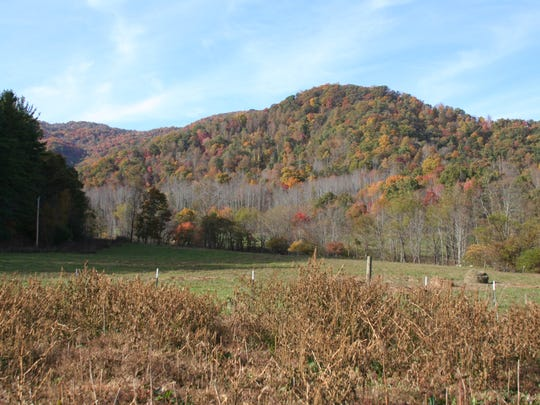 The Reeves Homeplace Farm in the Sandy Mush area of Madison County was recently placed in an agricultural conservation easement with the Southern Appalachian Highlands Conservancy.