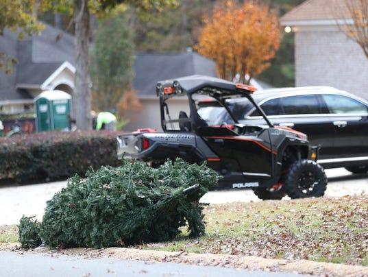 Jimbo's Christmas Tree