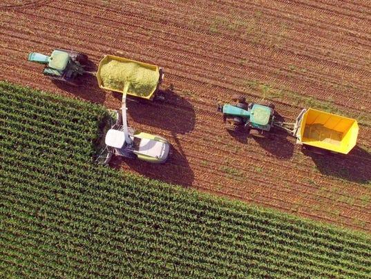 Harvest-iStockphoto.JPG