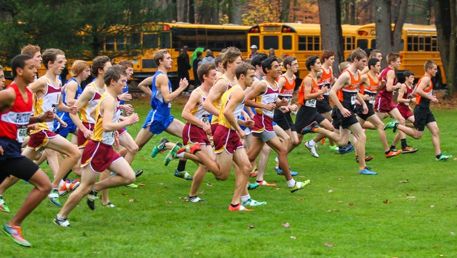 Runners react to the start of the gun in the 2014 Class A boys race at the Section 4 cross country championships last year, won by Ithaca. Ithaca runners hope to have similar success at the Federation meet this Saturday.