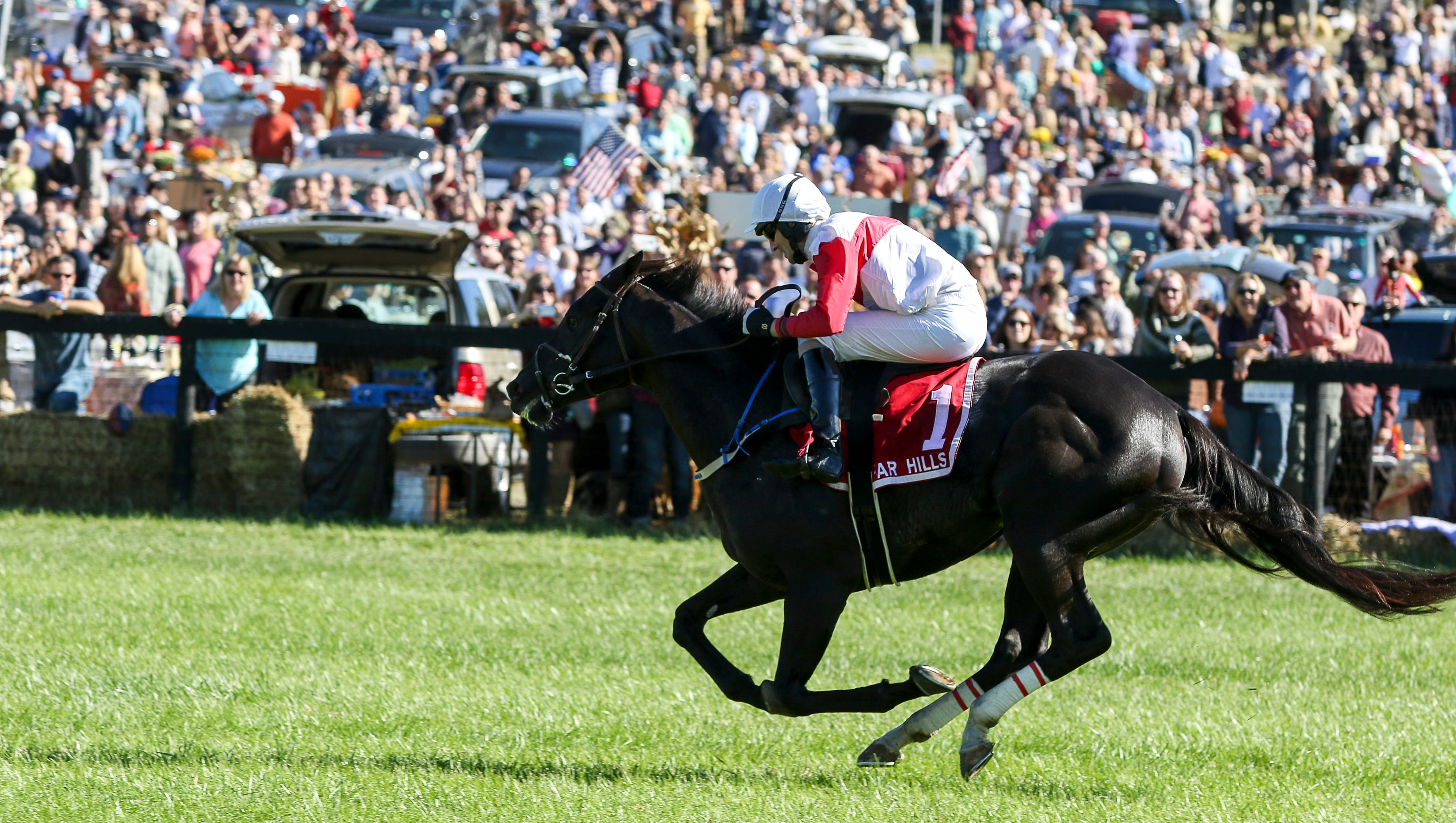 Far hills races betting line off track betting memphis tn zip