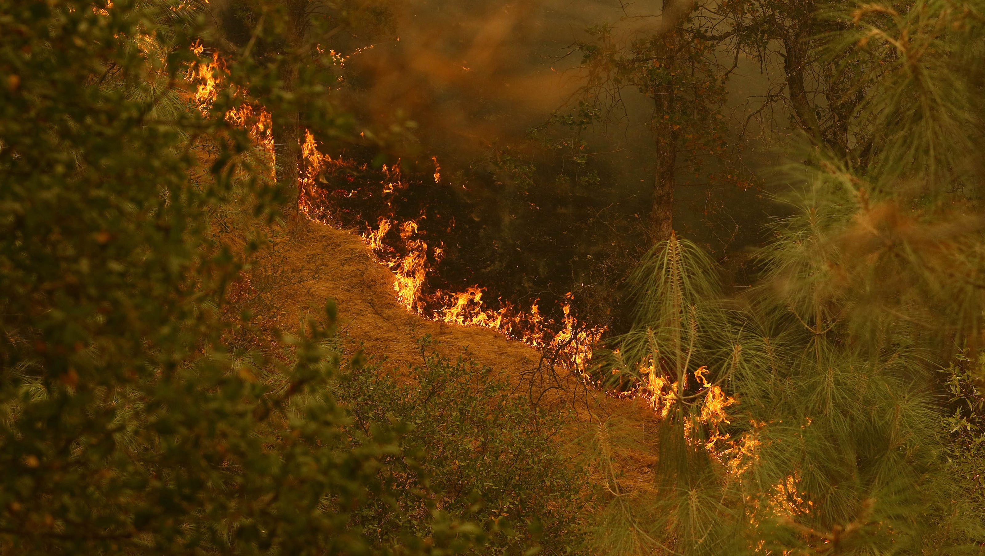 Update Carr Fire Claims Sixth Life 7 People Still Missing