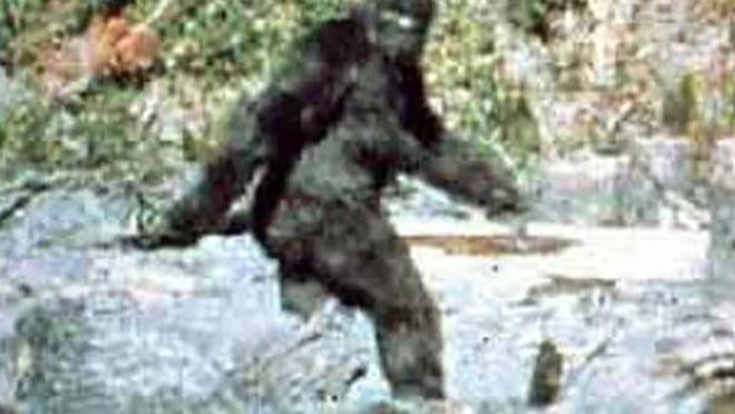 """Photo of alleged """"Bigfoot"""" walking through forest in 1967."""