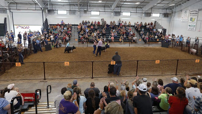 Destiny Reed wins the Grand Champion Market Hog inside the Heritage Hall during  the Pickaway County Fair in Circleville.  The Pickaway County Fair was the first fair in the state of Ohio to open this year.