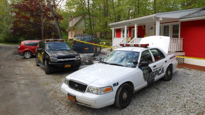 The Putnam SPCA pulled 70 cats, nine of which were dead, from a Kent home on Tuesday.