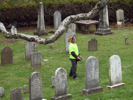 A contractor looks up at the historic oak tree at the Basking Ridge Presbyterian Church in Bernards that called the graveyard its home for the past 600 years. Crews Monday at the church began removing the tree, believed to be among the oldest in the nation and, according to legend, was a picnic site for George Washington.