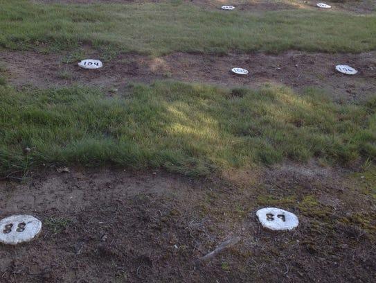 Photo 3 -- potters field