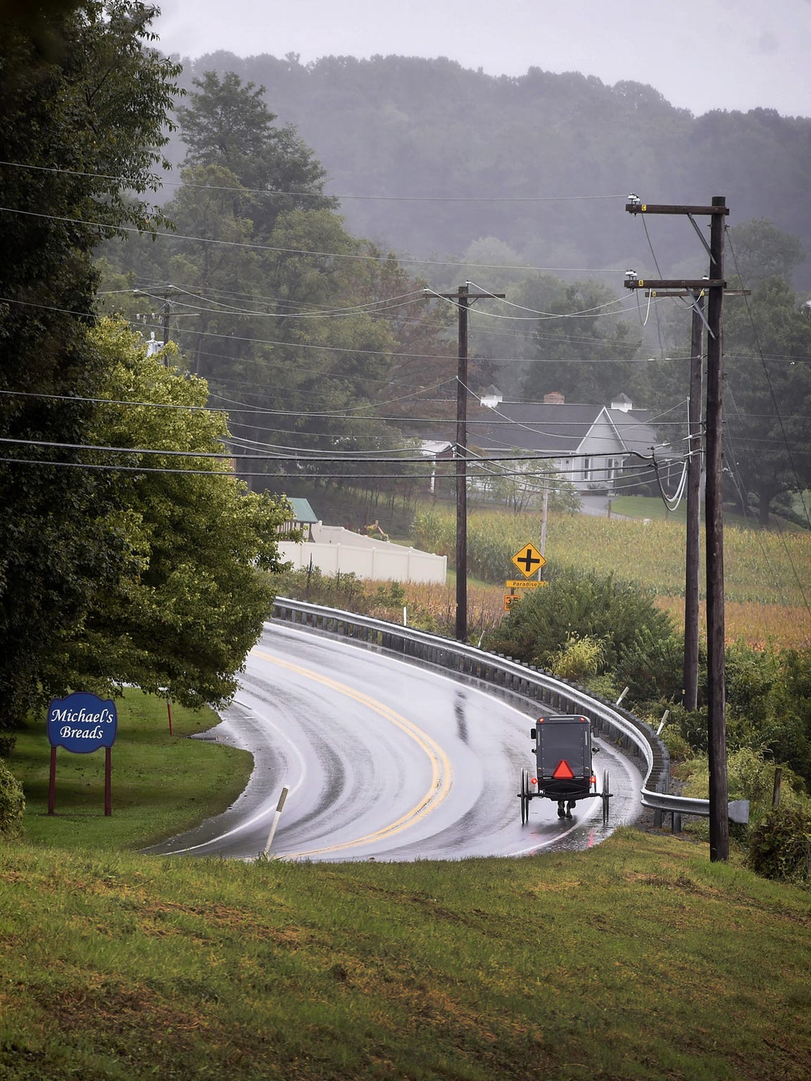 An Amish buggy travels down a long stretch of road