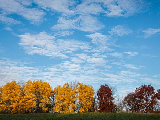 The last bit of fall color hangs on in northeast Iowa